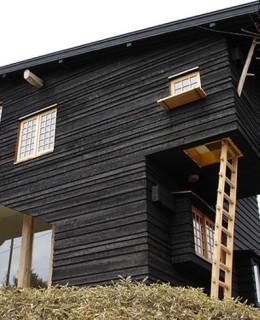 tehnica lemn