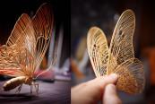 insecte din bambus